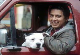 Handy Harrison (Ray Romano)