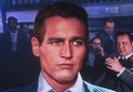 Haie der Großstadt - Paul Newman