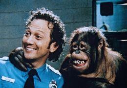 Rob Schneider in 'Animal - Das Tier im Manne'