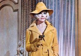 Spion in Spitzenhöschen - Doris Day