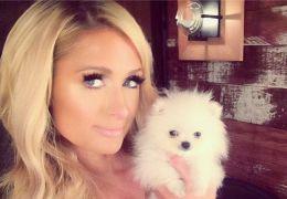 Paris Hilton - Paris Hilton und Prince Hilton