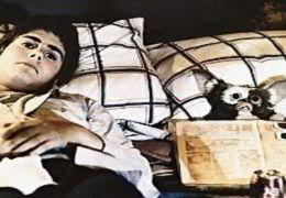 Zach Galligan in Gremlins - Kleine Monster