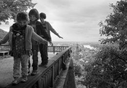 Im Spinnwebhaus -  Lutz Eilert (Nick); Ben...onas)