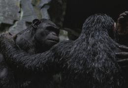 Planet der Affen: Survival - Andy Serkis (Caesar),...cket)