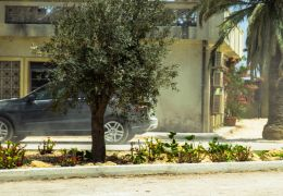 13 Hours: The Secret Soldiers of Benghazi - David Costabile