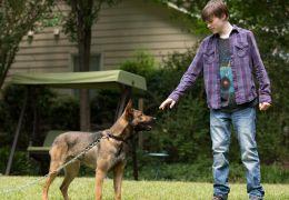 Max - MAX mit JOSH WIGGINS als Justin Wincott