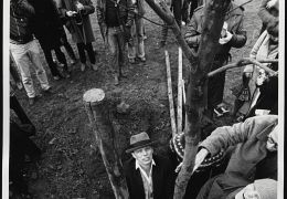 Beuys - Joseph Beuys bei der Pflanzung von  7000...1982.