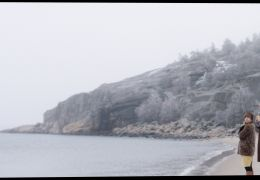 Wenn Fliegen träumen - Fliegen am Strand (Tina Amon...Paul)