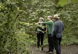 Hampstead Park   Aussicht auf Liebe - Regisseur Joel...eson.