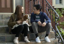 Bailey - Ein Hund kehrt zurück - CJ (Kathryn...eunde
