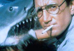 Der weiße Hai - Roy Scheider