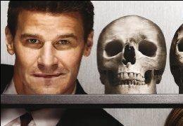 Bones - Season 4  6 DVDs